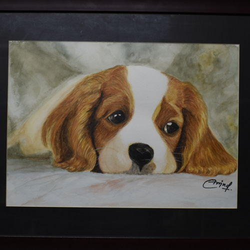 dog, 16 x 11 inch, arvind shaakya,16x11inch,canson paper,paintings,animal paintings,paintings for living room,watercolor,GAL01065823670