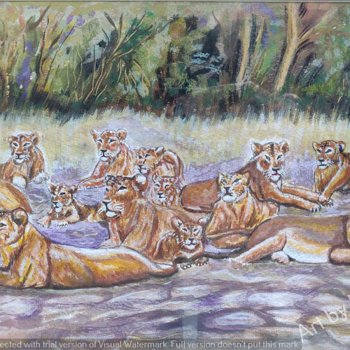 a group of lions, 19 x 13 inch, mangal singh,19x13inch,canvas,paintings,wildlife paintings,animal paintings,paintings for dining room,paintings for living room,paintings for bathroom,paintings for kids room,paintings for hotel,paintings for kitchen,paintings for school,acrylic color,GAL0648523681