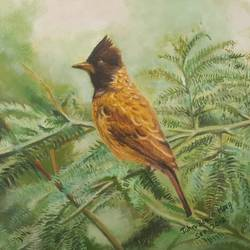 bulbul bird, 18 x 14 inch, john bosco mary,18x14inch,canvas board,paintings,wildlife paintings,animal paintings,paintings for school,oil color,GAL01232323763