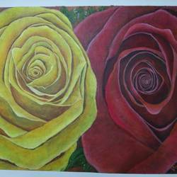 beauty of roses, 27 x 21 inch, vineeta  singh,27x21inch,canvas,paintings,flower paintings,nature paintings,acrylic color,GAL01238823787
