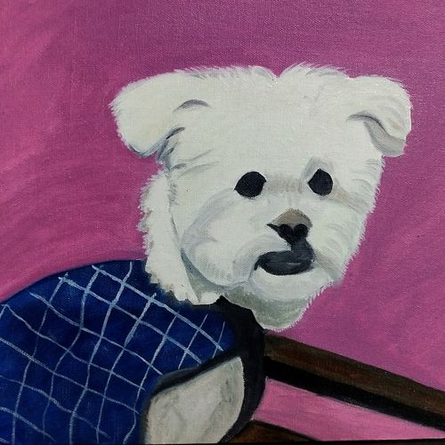 cute lhasa apso dog, 16 x 12 inch, ghanshyam  singh,16x12inch,canvas,paintings,animal paintings,dog painting,kids paintings,paintings for dining room,paintings for living room,paintings for bedroom,paintings for kids room,oil color,GAL01361323816