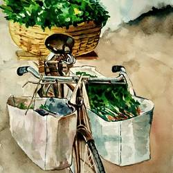 vegetable selling in cycle, 12 x 18 inch, rajasekar r,12x18inch,fabriano sheet,paintings,still life paintings,paintings for dining room,paintings for living room,paintings for bedroom,paintings for kitchen,paintings for dining room,paintings for living room,paintings for bedroom,paintings for kitchen,watercolor,GAL01366123889