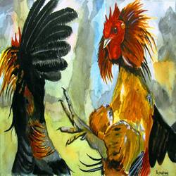 cock fight , 18 x 12 inch, rajasekar r,18x12inch,fabriano sheet,paintings,wildlife paintings,still life paintings,animal paintings,paintings for dining room,paintings for living room,paintings for bedroom,paintings for kitchen,watercolor,GAL01366123890