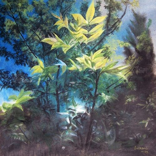 freshness, 15 x 18 inch, indranil datta,15x18inch,cartridge paper,paintings,foil paintings,landscape paintings,modern art paintings,conceptual paintings,nature paintings,surrealism paintings,realistic paintings,paintings for dining room,paintings for living room,paintings for bedroom,paintings for office,paintings for kids room,paintings for hotel,pastel color,paper,GAL01369824178