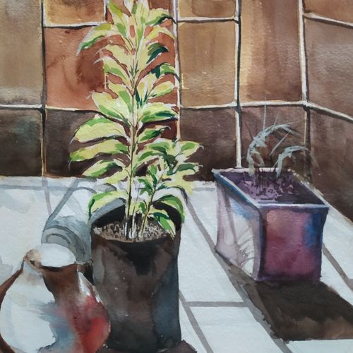 tulsi standing in bright sun, 15 x 11 inch, surendra  panchal,15x11inch,handmade paper,paintings,portrait paintings,nature paintings,paintings for living room,paintings for office,paintings for school,watercolor,GAL01323524189