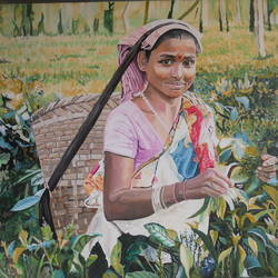 portrait lady in tea farm, 32 x 22 inch, amruta dabhekar,portrait paintings,paintings for living room,canvas,oil paint,32x22inch,GAL09542419