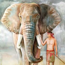 the elephant, 14 x 22 inch, tapas paul,14x22inch,fabriano sheet,paintings,elephant paintings,watercolor,GAL01146624315