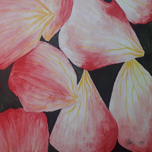 rose petal, 30 x 20 inch, naveen c.b,30x20inch,canvas,paintings,abstract paintings,paintings for dining room,paintings for living room,paintings for bedroom,paintings for office,paintings for bathroom,paintings for kids room,paintings for hotel,paintings for kitchen,paintings for school,paintings for hospital,acrylic color,GAL01398424419