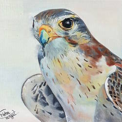 birds eye on goal, 8 x 7 inch, neha  gangal,8x7inch,oil sheet,wildlife paintings,paintings for living room,paintings for living room,oil color,GAL01408624637