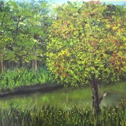 evergreen beauty, 24 x 18 inch, nishad kariyadan,24x18inch,canvas,paintings,landscape paintings,nature paintings,realistic paintings,paintings for dining room,paintings for living room,paintings for bedroom,paintings for office,paintings for hotel,paintings for hospital,oil color,GAL01401124707