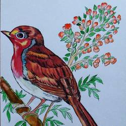 chirpy bird, 9 x 10 inch, padmini abrol,9x10inch,cartridge paper,paintings,wildlife paintings,still life paintings,nature paintings,illustration paintings,animal paintings,baby paintings,children paintings,kids paintings,paintings for dining room,paintings for living room,paintings for bedroom,paintings for office,paintings for bathroom,paintings for kids room,paintings for hotel,paintings for kitchen,paintings for school,paintings for hospital,pastel color,watercolor,GAL0314924858