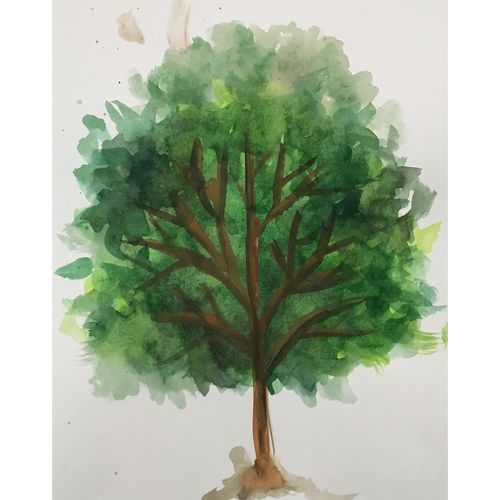 evergreen tree, 8 x 12 inch, suvrojit choudhury,8x12inch,paper,paintings,abstract paintings,paintings for dining room,paintings for living room,paintings for bedroom,paintings for office,paintings for bathroom,paintings for kids room,paintings for hotel,paintings for kitchen,paintings for school,paintings for hospital,watercolor,GAL0289124862