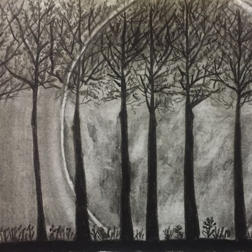 dark forest, 11 x 6 inch, surbhi razdan,11x6inch,paper,paintings for dining room,paintings for bedroom,paintings for office,art deco drawings,paintings for dining room,paintings for bedroom,paintings for office,charcoal,pencil color,GAL01424024903
