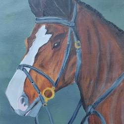 horse , 15 x 23 inch, bharani archana,15x23inch,canvas,paintings,wildlife paintings,realistic paintings,horse paintings,paintings for living room,paintings for office,acrylic color,GAL01153024928