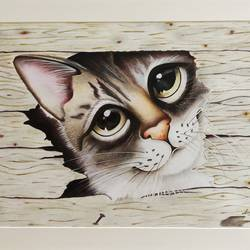 naughty cat, 14 x 21 inch, laxmi sharma,14x21inch,ivory sheet,drawings,fine art drawings,realism drawings,paintings for kids room,pencil color,GAL01411325008