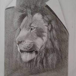 3d lion, 12 x 19 inch, shiuli majumder,12x19inch,cartridge paper,drawings,modern drawings,graphite pencil,GAL01355225079