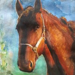 dark horse, 11 x 15 inch, surendra  panchal,11x15inch,handmade paper,paintings,wildlife paintings,animal paintings,horse paintings,paintings for living room,paintings for bedroom,paintings for office,paintings for school,watercolor,GAL01323525099