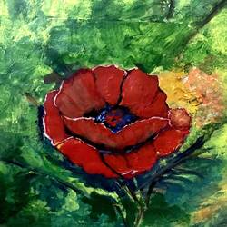 a beautiful poppy!, 4 x 4 inch, monika ohri,4x4inch,canvas,paintings,flower paintings,nature paintings,paintings for dining room,paintings for living room,paintings for bedroom,paintings for hotel,paintings for school,paintings for hospital,acrylic color,GAL01444425359