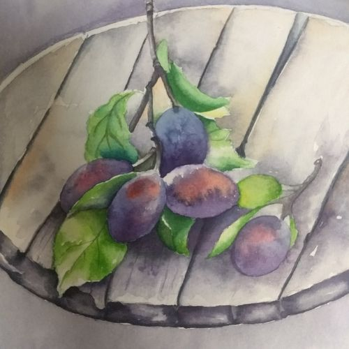black current, 8 x 11 inch, sonu chopra,8x11inch,fabriano sheet,paintings,still life paintings,paintings for dining room,paintings for kitchen,watercolor,GAL0854725441