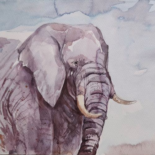 tusker, 12 x 8 inch, samudra sarma,12x8inch,brustro watercolor paper,paintings,wildlife paintings,nature paintings,animal paintings,elephant paintings,paintings for dining room,paintings for living room,paintings for bedroom,paintings for office,paintings for kids room,watercolor,paper,GAL01479425481