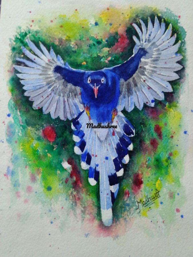 blue wings, 10 x 12 inch, madhushree pawar,10x12inch,handmade paper,paintings,wildlife paintings,nature paintings,art deco paintings,animal paintings,paintings for dining room,paintings for living room,paintings for bedroom,paintings for office,paintings for kids room,paintings for hotel,paintings for hospital,watercolor,paper,GAL01458325493