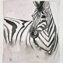 zebra painting,watercolor small painting, 6 x 6 inch, harshita s,6x6inch,brustro watercolor paper,paintings,wildlife paintings,modern art paintings,nature paintings,animal paintings,contemporary paintings,children paintings,kids paintings,paintings for dining room,paintings for living room,paintings for bedroom,paintings for office,paintings for kids room,paintings for hotel,paintings for school,watercolor,GAL01430725559
