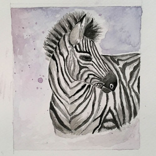 zebra painting,watercolor small painting, 5 x 6 inch, harshita s,5x6inch,brustro watercolor paper,wildlife paintings,modern art paintings,nature paintings,animal paintings,baby paintings,children paintings,kids paintings,paintings for dining room,paintings for living room,paintings for bedroom,paintings for office,paintings for kids room,paintings for hotel,paintings for school,paintings for dining room,paintings for living room,paintings for bedroom,paintings for office,paintings for kids room,paintings for hotel,paintings for school,watercolor,GAL01430725561