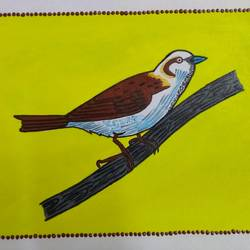 sparrow, 11 x 7 inch, geeta kwatra,11x7inch,handmade paper,paintings,abstract paintings,wildlife paintings,nature paintings,animal paintings,paintings for dining room,paintings for kids room,paintings for hotel,mixed media,GAL0899125641