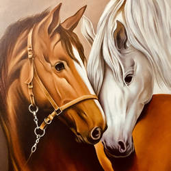 horses portrait, 18 x 24 inch, augustine devotta,18x24inch,canvas,animal paintings,paintings for living room,paintings for office,paintings for hotel,paintings for living room,paintings for office,paintings for hotel,oil color,GAL0695425670