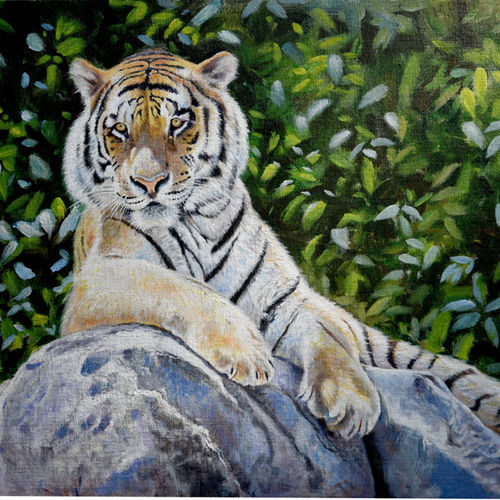 rest in the wild, 30 x 20 inch, debojyoti boruah,30x20inch,canvas board,paintings,wildlife paintings,photorealism paintings,photorealism,realism paintings,animal paintings,realistic paintings,paintings for dining room,paintings for living room,paintings for bedroom,paintings for office,paintings for hotel,paintings for kitchen,acrylic color,GAL01261425783