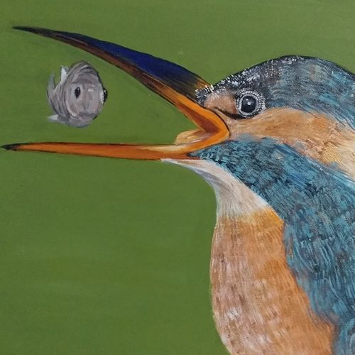the kingfisher, 12 x 12 inch, urvashi verma,12x12inch,canvas,paintings,wildlife paintings,nature paintings,realistic paintings,paintings for dining room,paintings for living room,paintings for bedroom,paintings for dining room,paintings for living room,paintings for bedroom,acrylic color,GAL01503925860
