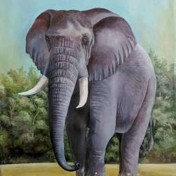 strength and power, 23 x 30 inch, tapas paul,23x30inch,canvas,paintings,elephant paintings,acrylic color,GAL01146626028