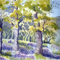 bluebells wood, uk, 13 x 20 inch, murugesan a.,13x20inch,arches paper,paintings,landscape paintings,nature paintings,impressionist paintings,paintings for dining room,paintings for living room,paintings for office,paintings for hotel,paintings for school,paintings for hospital,watercolor,paper,GAL01496126035