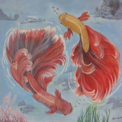 fishes swirling, 24 x 24 inch, silvia corda,24x24inch,canvas,paintings,animal paintings,paintings for dining room,paintings for living room,paintings for kids room,paintings for hotel,paintings for school,acrylic color,GAL01547026166