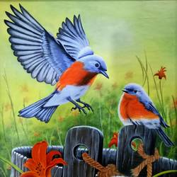 birds, 22 x 32 inch, shyamal pal,22x32inch,canvas,paintings,wildlife paintings,paintings for living room,acrylic color,GAL01479226434