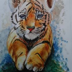 tiger cub, 12 x 19 inch, shiuli majumder,12x19inch,cartridge paper,paintings,wildlife paintings,watercolor,GAL01355226505