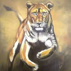 lioness on the prawl , 36 x 40 inch, hardeep singh,36x40inch,canvas,paintings,wildlife paintings,oil color,GAL01576326571
