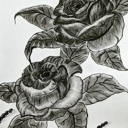 mesmerizing roses, 15 x 12 inch, pratibha khemchandani,15x12inch,cartridge paper,drawings,art deco drawings,expressionism drawings,figurative drawings,fine art drawings,photorealism drawings,portrait drawings,street art,kids drawings,paintings for dining room,paintings for living room,paintings for bedroom,paintings for office,paintings for bathroom,paintings for kids room,paintings for hotel,paintings for kitchen,paintings for school,paintings for hospital,graphite pencil,paper,GAL01581426584