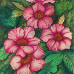 pink beauty, 10 x 14 inch, deepa singh,10x14inch,handmade paper,paintings,flower paintings,nature paintings | scenery paintings,realistic paintings,paintings for dining room,paintings for living room,paintings for bedroom,paintings for office,paintings for kids room,paintings for hotel,pencil color,watercolor,GAL01060126675