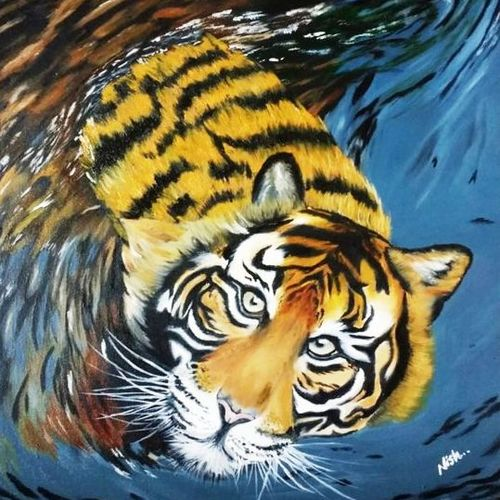 tiger in water oil painting on canvas, 18 x 22 inch, nishmitha  u r,18x22inch,canvas,paintings,wildlife paintings,paintings for living room,paintings for bedroom,paintings for office,paintings for hotel,oil color,GAL01606926898