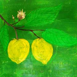 lemon tree, 16 x 12 inch, minakhi choudhury,16x12inch,canvas,paintings,nature paintings | scenery paintings,paintings for bathroom,paintings for kitchen,mixed media,poster color,GAL01441426932