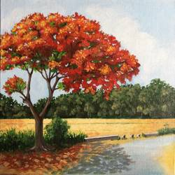 gulmohar, 12 x 12 inch, aparna joshi,12x12inch,canvas,paintings,flower paintings,landscape paintings,nature paintings | scenery paintings,realistic paintings,paintings for dining room,paintings for living room,paintings for bedroom,paintings for office,paintings for hotel,paintings for school,acrylic color,GAL01573627149