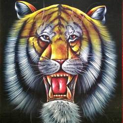 animal, 20 x 27 inch, vishal gurjar,20x27inch,cloth,paintings,wildlife paintings,animal paintings,miniature painting.,paintings for hotel,mixed media,oil color,GAL0778127153