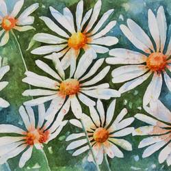 white daisies , 11 x 8 inch, anjana  sihag,11x8inch,brustro watercolor paper,paintings,flower paintings,nature paintings | scenery paintings,paintings for dining room,paintings for bedroom,watercolor,paper,GAL01579427593
