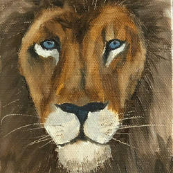 lion portrait, 4 x 6 inch, amit soni,4x6inch,canvas board,wildlife paintings,oil color,GAL01671927776