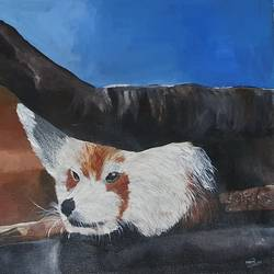 red panda, 21 x 13 inch, netanel  leo ,21x13inch,canvas,paintings,wildlife paintings,portrait paintings,animal paintings,paintings for living room,paintings for office,paintings for hotel,paintings for living room,paintings for office,paintings for hotel,acrylic color,GAL01693428044