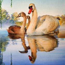 cygnus and her cygnets, 18 x 30 inch, shailesh chibire,realism paintings,paintings for living room,paintings for office,love paintings,vertical,canvas,oil,18x30inch,GAL011042806
