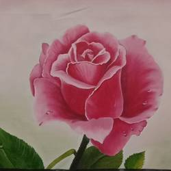 rose , 23 x 15 inch, ila  singh,23x15inch,canvas,paintings,flower paintings,conceptual paintings,nature paintings | scenery paintings,abstract expressionism paintings,illustration paintings,impressionist paintings,photorealism paintings,photorealism,realism paintings,realistic paintings,paintings for dining room,paintings for bedroom,paintings for office,paintings for kids room,paintings for hotel,paintings for school,paintings for hospital,oil color,GAL0795928110