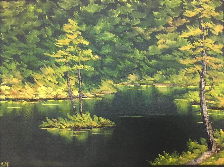 green forest, 24 x 17 inch, shankhadeep  mondal,24x17inch,canvas,paintings,landscape paintings,paintings for dining room,paintings for living room,paintings for bedroom,paintings for office,paintings for kids room,paintings for hotel,paintings for kitchen,paintings for school,paintings for hospital,acrylic color,GAL01403028143