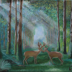 forest, 20 x 16 inch, kailash chand,20x16inch,canvas,paintings,wildlife paintings,landscape paintings,oil color,GAL01639228189
